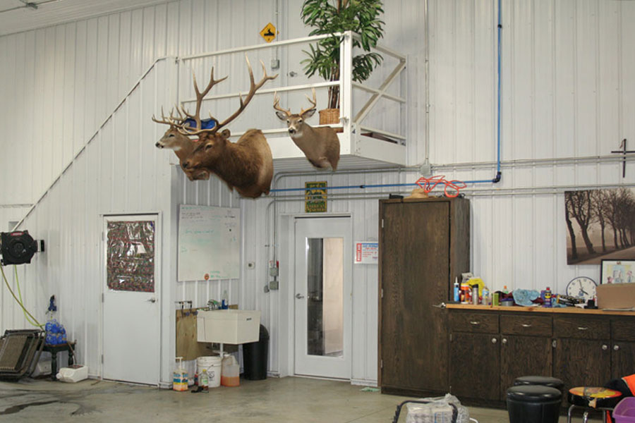 Deer and elk trophies in machine shed work area
